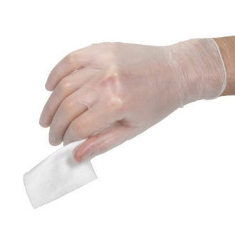 Vinyl Powder Free Gloves Pk/100